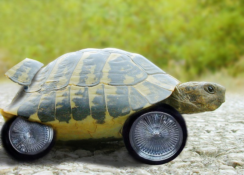 Teenage-Mutant-NissanTurtle-Car